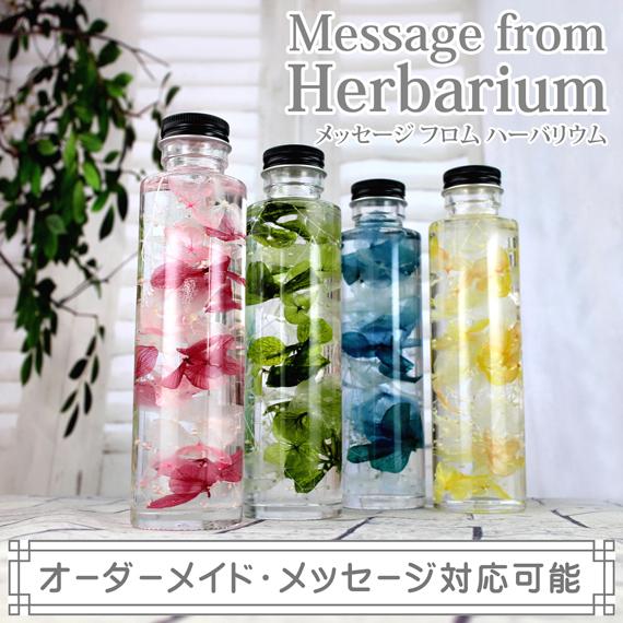 ハーバリウム,植物標本