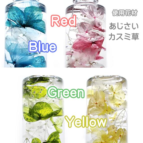 ハーバリウム,色,カラー