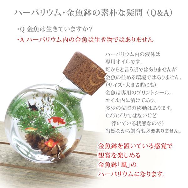 ハーバリウム 金魚鉢